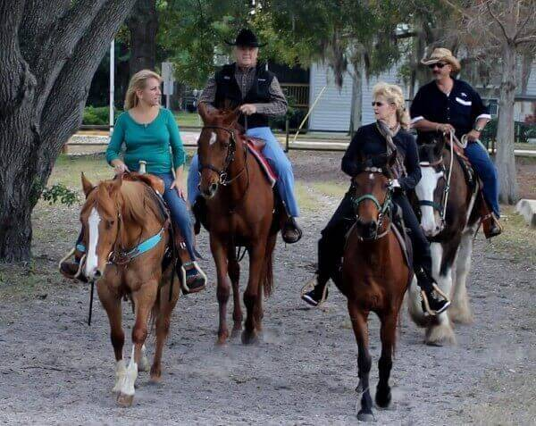 Horseback riding trail rides tampa st petersburg clearwater