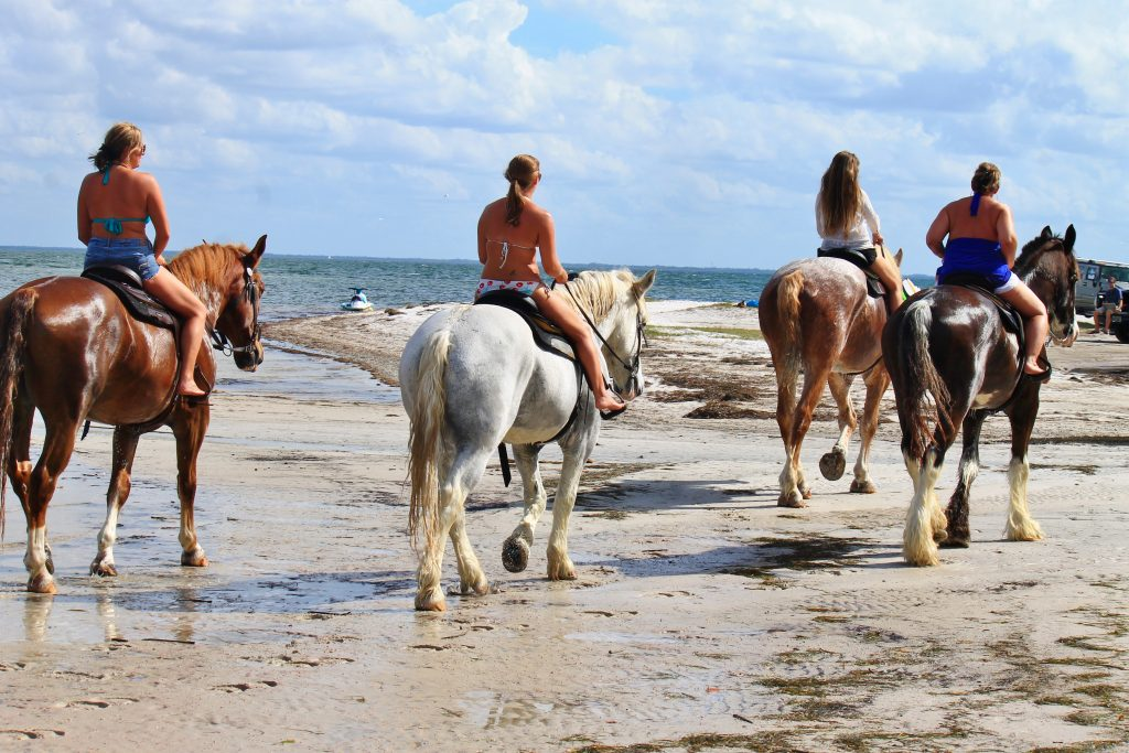 Florida beach horseback riding