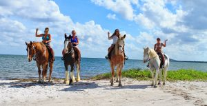 Beach horseback rides florida