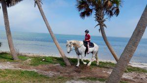 FLorida Beach horseback rides (2)